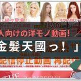 日本人向けの洋モノ動画「金髪天国」