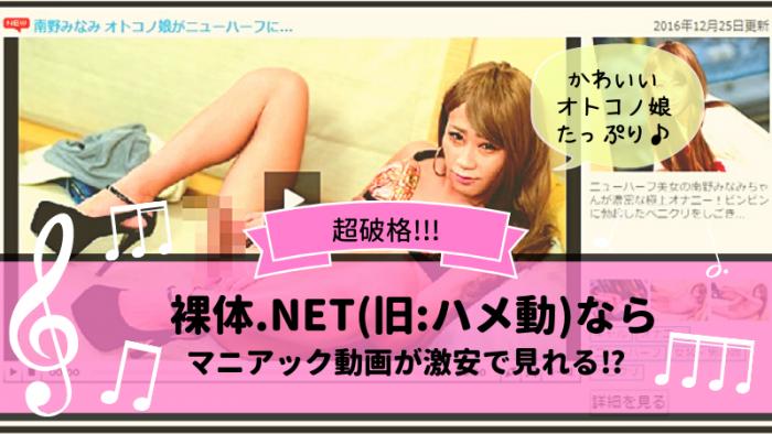 裸体.NET(旧:ハメ動)